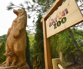 Grizzly Ridge <br/> Akron Zoo