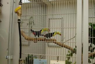 Avian Propagation Center <br/> Denver Zoo