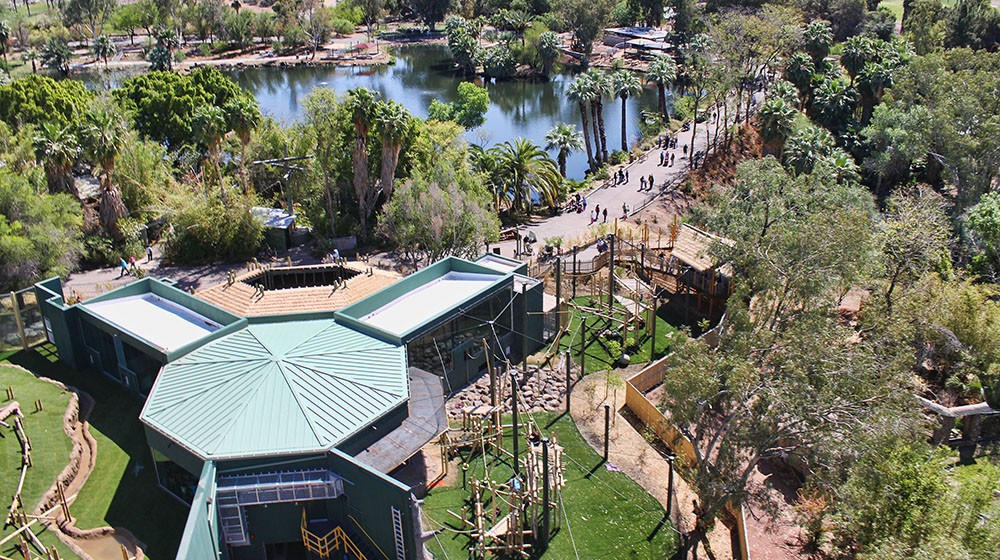 WDM Zoo Architects  Phoenix Zoo  People of The Forest