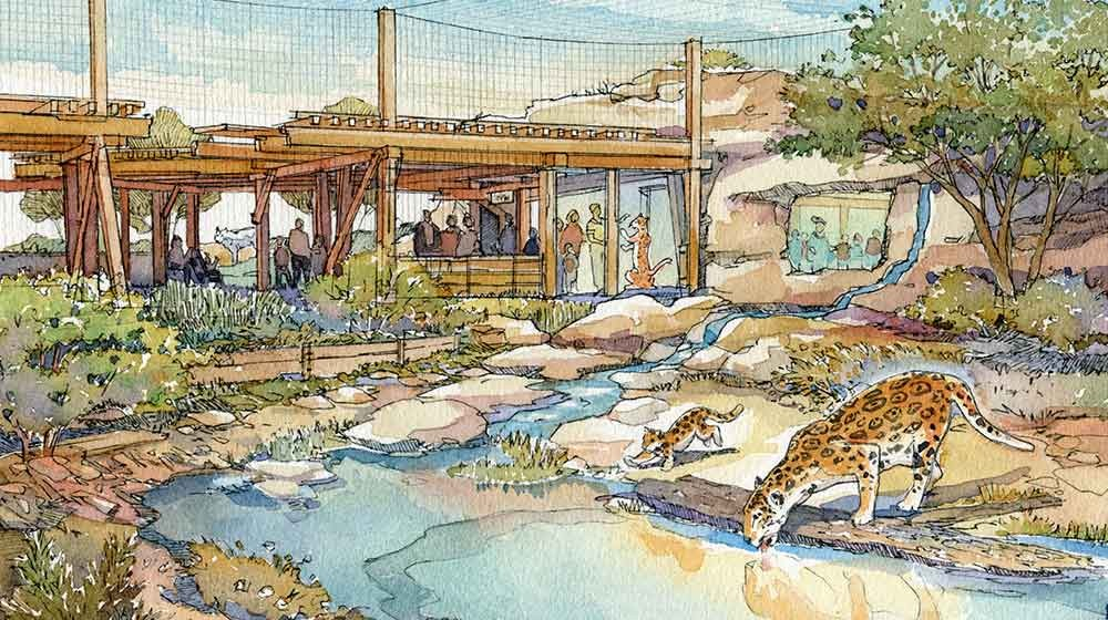 Wdm Zoo Architects El Paso Zoo